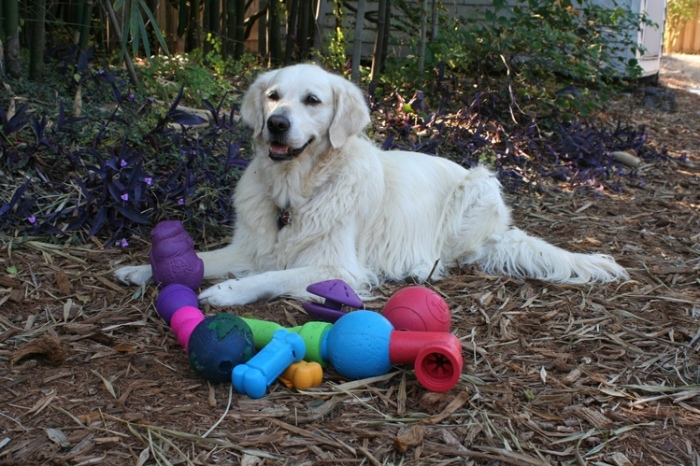 Jana, with her favorite treat toys