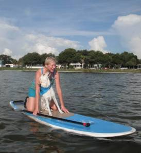 Albee paddleboard