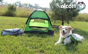 doggy tent