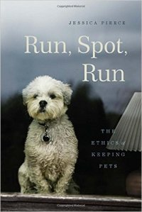 Run Spot Run