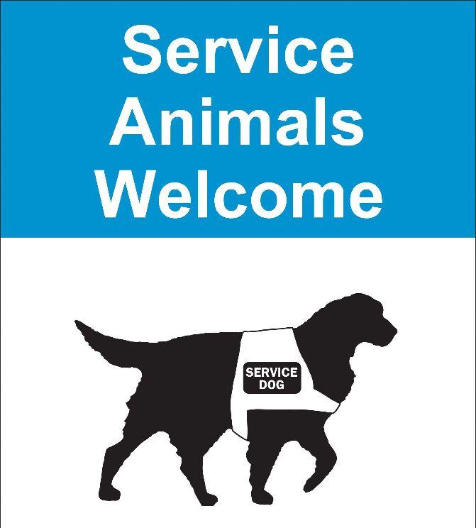 Service Dog Training Tampa Bay