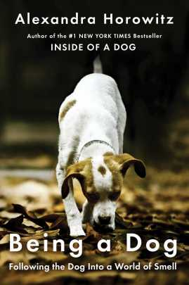 Book cover of Being a Dog by Alexandra Horowitz; small brown-and-white dog sniffing leaves