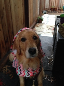 Cali models her raincoat