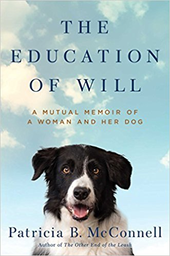 Photo of the book cover of The Education of Will