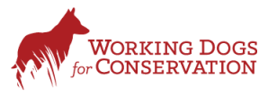 Working Dogs for Conservation logo features a dog standing in the grass