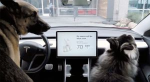 A screen shows the Tesla Dog MOde message, My owner will be back soon.