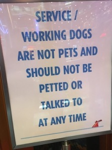 "sign reads ""service / working dogs are not pets and should not be petted or talked to at any time."""