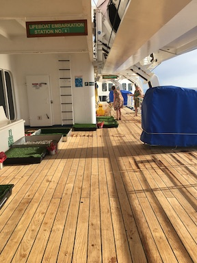 Portable dog toilet area on ship deck