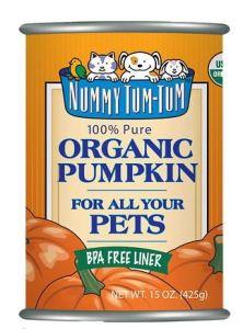 "Pumpkin ""for dogs"""